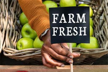 Farm produce sign