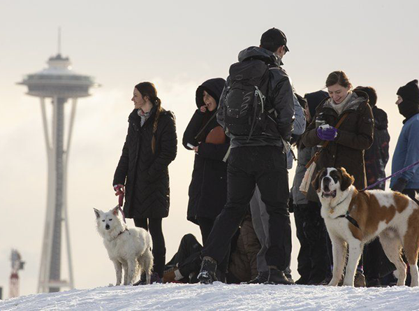 People and dogs standing on snow with Space Needle in background